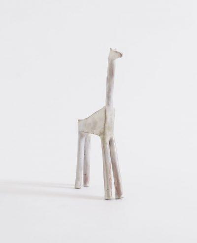 Giraffa / (Giraffe)