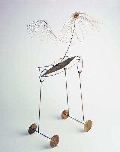 La medusa allo specchio / The Jellyfish at the Mirror